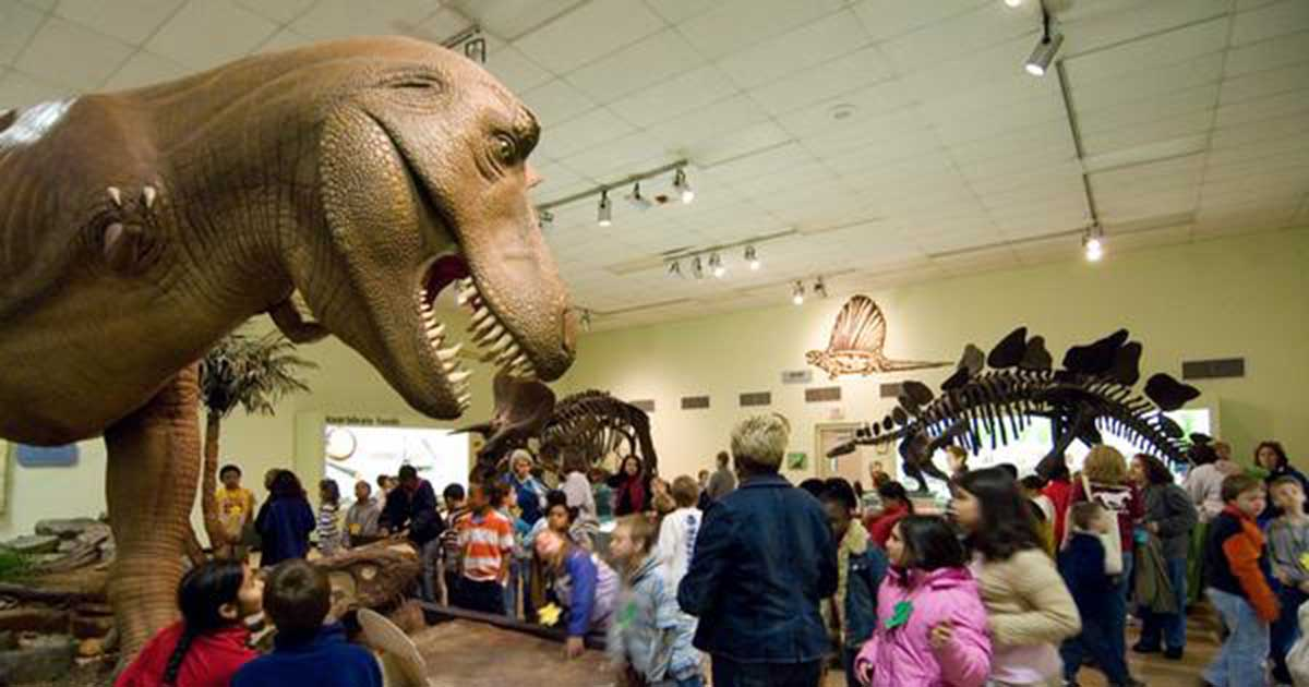 Greensboro Science Center A Bustling Trio of Family Fun: Aquarium, Museum and Zoo!