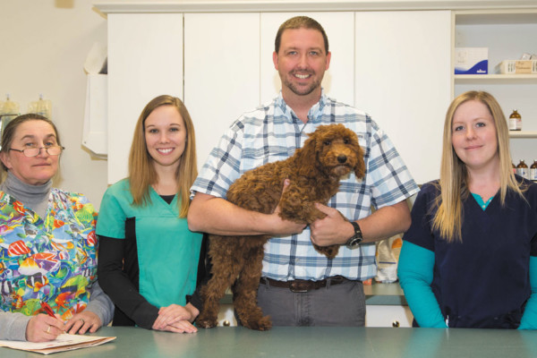 Shallowford Animal Hospital Knowledgeable and Compassionate Care for Your Pet