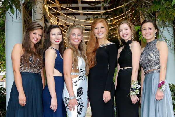 Hip Chics:  The Pursuit of Prom