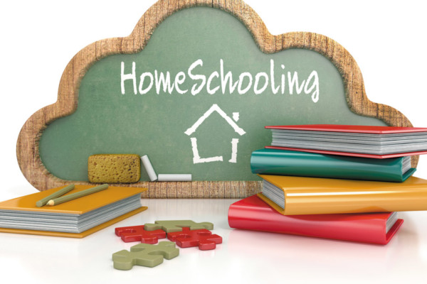 So You Think You Want to Homeschool?