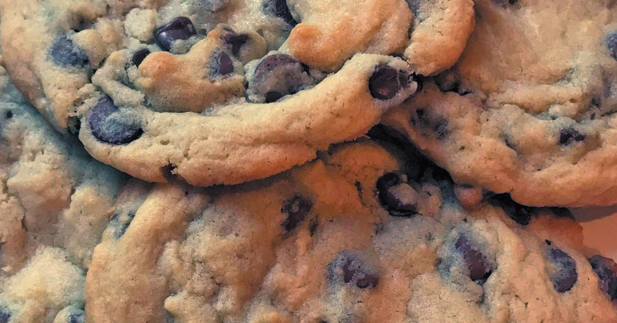 2dbef5d6c55 A Sweet Ending  Soft and Chewy Chocolate Chip Cookies - Forsyth ...
