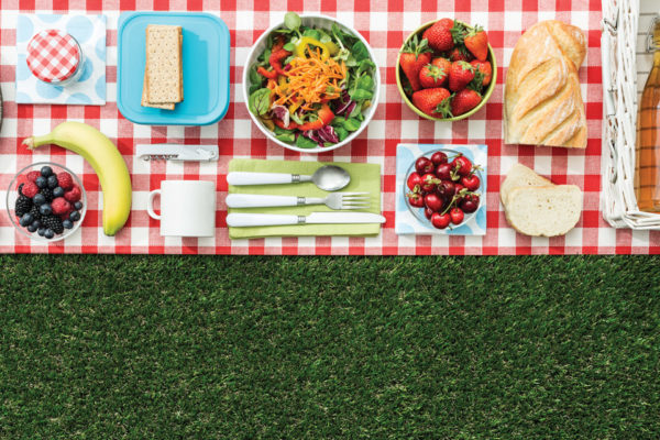 July is National Picnic Month!  13 Tips for Hot Weather Food Safety