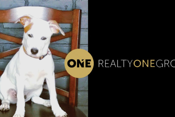 Realty ONE Group: A Different Approach to Real Estate with You in Mind