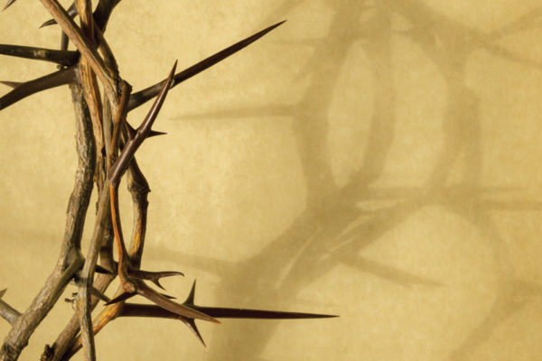Reflections on Holy Week