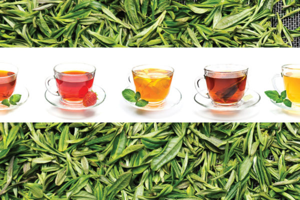 Why Tea?  Health Benefits of This Popular Beverage