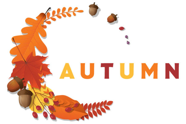 Kids' and Kids'-at-Heart Autumn DIY Arts & Crafts