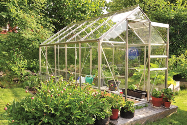 Dreams of a Greenhouse